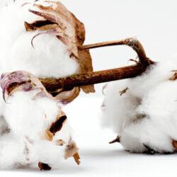 sabanas de algodón 100% natural