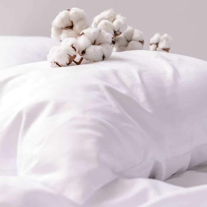 juegos de cama de algodon organico